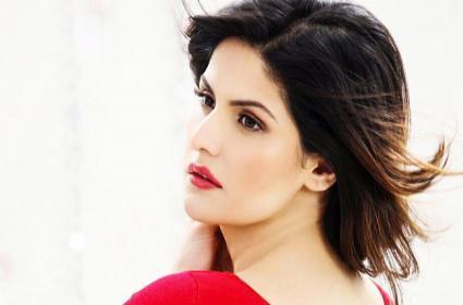 Gopichand to Bring Zareen Khan in Tollywood - Sakshi