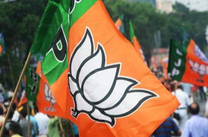 BJP Releases Second List For Telangana Lok Sabha Candidates - Sakshi
