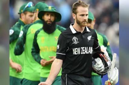 Paul Adams Questions New Zealand Captain Kane Williamson Ethics - Sakshi
