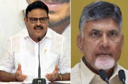 YSRCP Leader Ambati Rambabu Critics Chandrababu Over Flood Politics - Sakshi