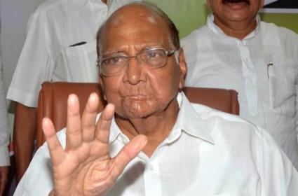 Shiv Sena Must Choose Their Path Says Sharad Pawar - Sakshi