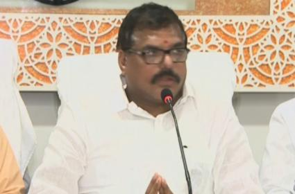 Minister Botsa Satyanarayana Fires On TDP Leaders - Sakshi