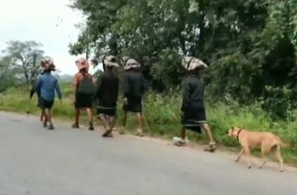 Dog As Pilgrimage Walks 480 km With 13 Devotee To Sabarimala - Sakshi