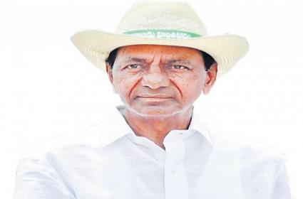 KCR Government Completes One Year Today - Sakshi