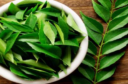 Health Benefits With Curry Leaves Like Weight Loss Hair Growth Better Digestion - Sakshi