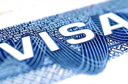 India Relaxes Visa rules For Engineers And Healthcare Professionals - Sakshi