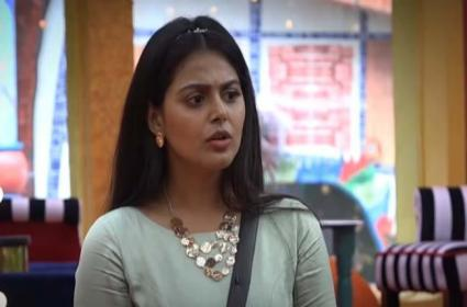 Bigg Boss 4 Telugu: Monal Might Be In Danger Zone This Week - Sakshi