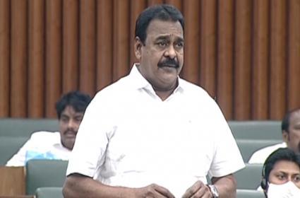 Janasena MLA Rapaka varaprasad Praises CM YS Jagan - Sakshi
