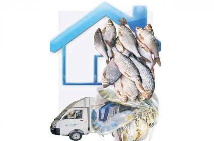 Fish And Prawns In Mobile Vehicles In Front Of People In AP - Sakshi