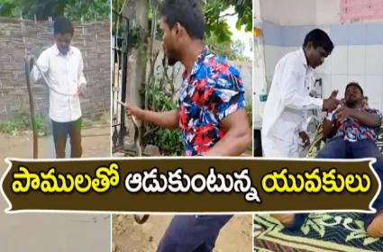 Snake Bite Tragedy In Adilabad District - Sakshi