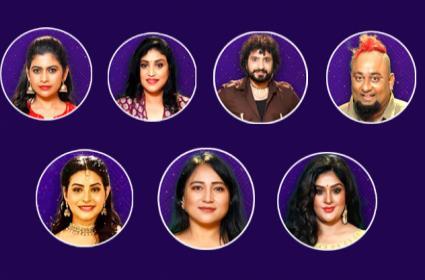 Bigg Boss Telugu 5: Anee Or Natraj Master Likely Exit The House - Sakshi