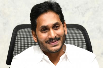 CM YS Jaganmohan Reddy Comments In video conference - Sakshi