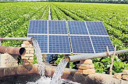 Solar Plants In Crop Fields - Sakshi