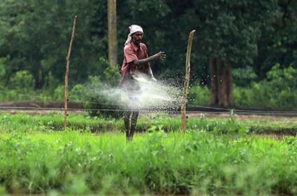 Cabinet Approves Hike in DAP Fertiliser Subsidy by RS 450 per bag - Sakshi
