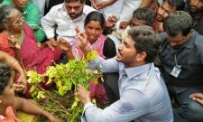 YS Jagan visits crops at Seetharampally, talks with farmers