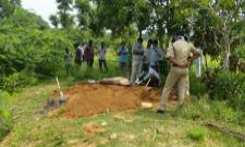 Husband Killed Wife in Anantapur