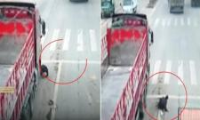 Man narrowly escaped from a Truck accident - Sakshi
