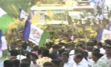Grand Welcome for YS Jagan in Jammalamadugu - Sakshi