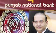 ED raids Nirav Modi properties  - Sakshi