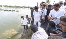YS Jagan Mohan Reddy Meets Aqua Farmers In Padakapavaram - Sakshi