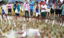 Cyclone Phethai Causes For Farmer Death In Srikakulam - Sakshi
