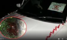 Four Red Sandalwood Smugglers Arrested In Tirupati - Sakshi