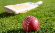 Young Cricketer Dies On The Field After Collapsing During Warm Up - Sakshi