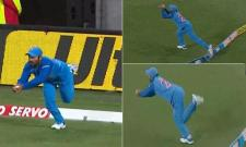 Dinesh Karthik Stunning Catch In First T20 Against New Zealand - Sakshi
