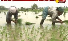 Kharif sowing hit by deficit rains