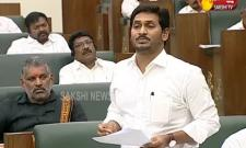 AP CM YS Jagan Comments On Chandrababu Naidu over Power Purchase Agreements