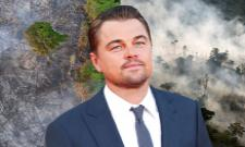 Hollywood Hero Leonardo DiCaprio Pledges Rs 36 Crore in Aid for Amazon Wildfires - Sakshi