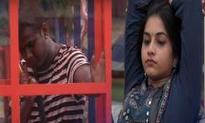 Bigg Boss 3 Telugu Is Punarnavi Sacrifice For Rahul - Sakshi