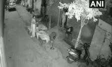 Watch, Man Trying To Kidnap Sleeping Child In Punjab  - Sakshi