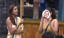 Bigg Boss 3 Telugu Punarnavi Reveals Her Relationship With Rahul - Sakshi