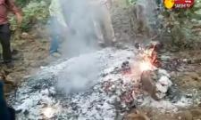 New Twist In Lion Murder In Adilabad District