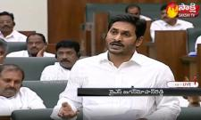 AP CM YS Jagan Mohan Reddy Speech Over Andhra Pradesh Disha Bill 2019 in AP Assembly Sessions - Sakshi
