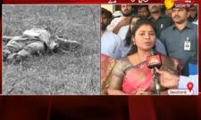 Ap Deputy CM Pushpa Srivani Comments On Disha Case Accused Encounter - Sakshi