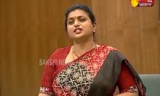 YSRCP MLA RK Roja Speech In AP Assembly - Sakshi