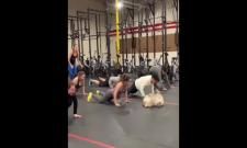Australian Dog Doing Exercises Viral Video - Sakshi