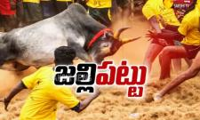 Jallikattu Competition in Tamilnadu
