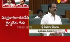 Kannababu Speech On Rule 71 In Assembly Special Session - Sakshi
