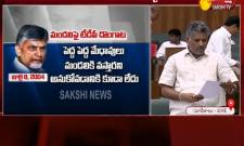 YSRCP MLA Chevireddy Bhaskar Reddy Fires On Chandrababu Naidu- Sakshi