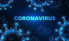 Some Of Parodies On Corona Virus Went Viral - Sakshi