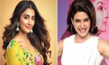 Actress Pooja Hegde apologies to samantha Akkineni - Sakshi