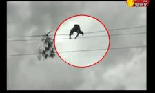 Young Man Climbs An Electric Pole At Nizampur