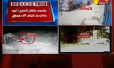 Leopard Spotted Again in Hyderabad
