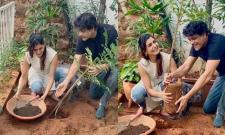 Samantha planted sapling with King Nagarjuna - Sakshi
