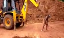 Viral Video Of Man Used JCB Excavator