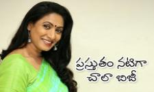 Heroine Aamani Talks About Amma Deevena Movie - Sakshi