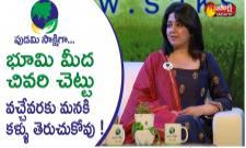 Puri Jagannadh, Charmi, Ali Discussion Over Air Pollution - Sakshi